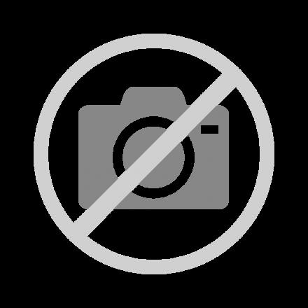 """Fensterbild /""""Die Biene Maja/"""""""
